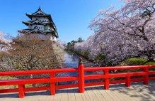 Фотообои Япония 250 р